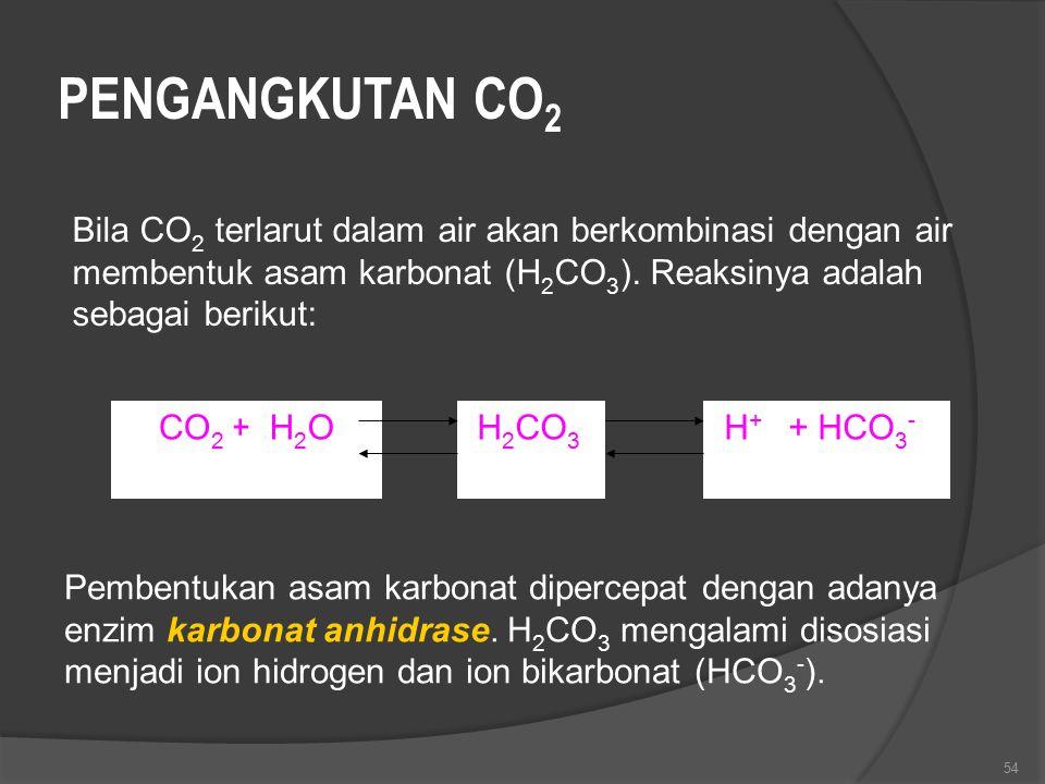 PENGANGKUTAN CO2 Bila CO2 terlarut dalam air akan berkombinasi dengan air membentuk asam karbonat (H2CO3). Reaksinya adalah sebagai berikut: