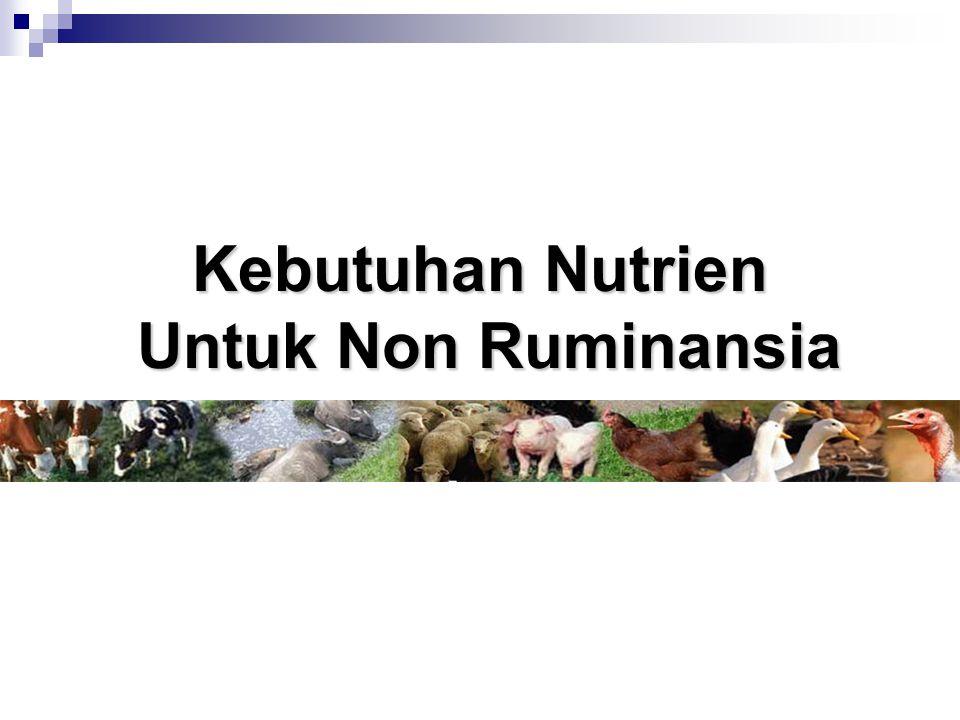 Kebutuhan Nutrien Untuk Non Ruminansia