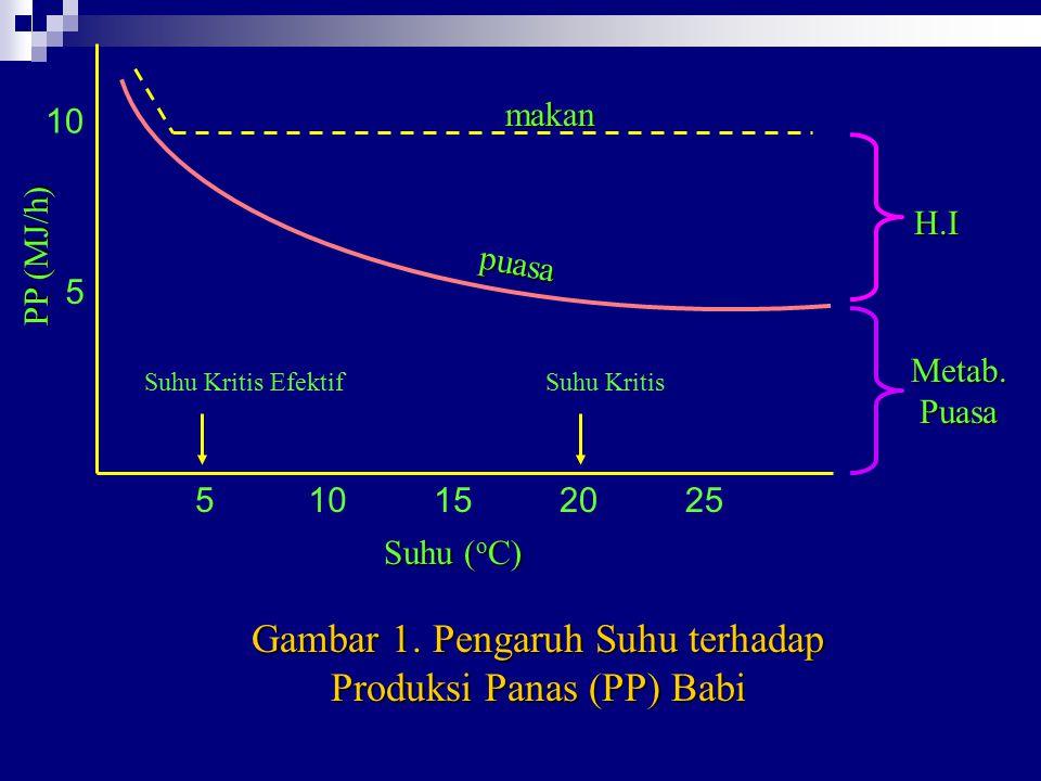 Gambar 1. Pengaruh Suhu terhadap Produksi Panas (PP) Babi