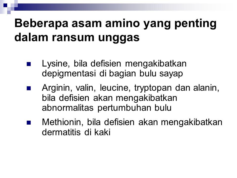 Beberapa asam amino yang penting dalam ransum unggas
