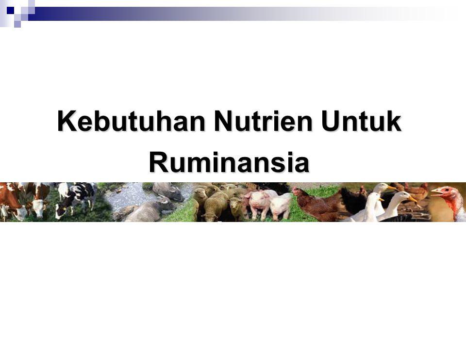 Kebutuhan Nutrien Untuk