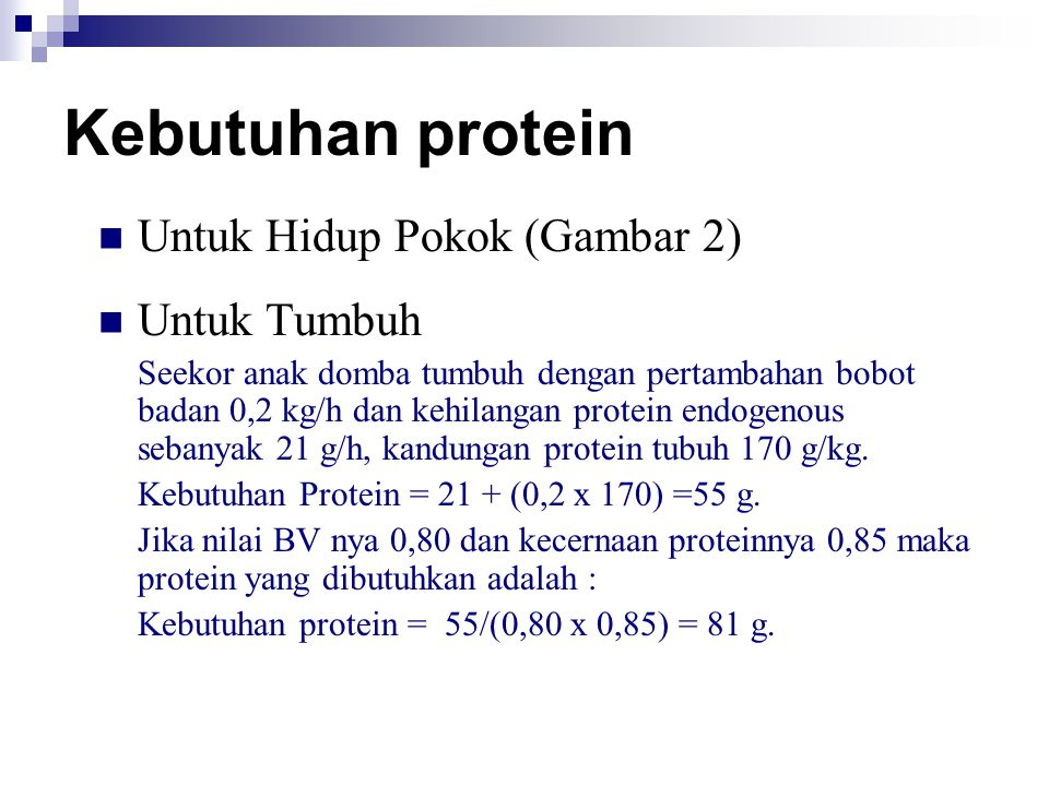 Kebutuhan protein Untuk Hidup Pokok (Gambar 2) Untuk Tumbuh