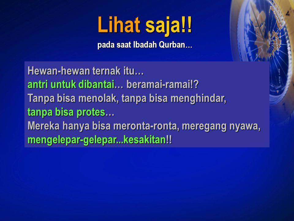 Lihat saja!! pada saat Ibadah Qurban…