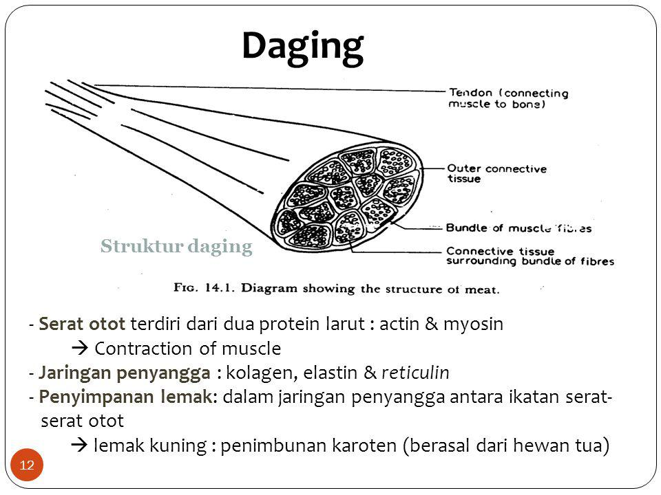 Daging - Serat otot terdiri dari dua protein larut : actin & myosin