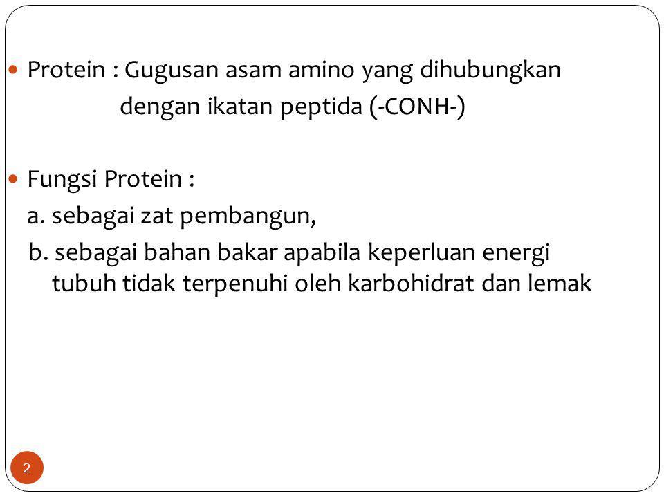Protein : Gugusan asam amino yang dihubungkan