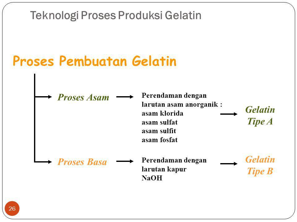 Teknologi Proses Produksi Gelatin