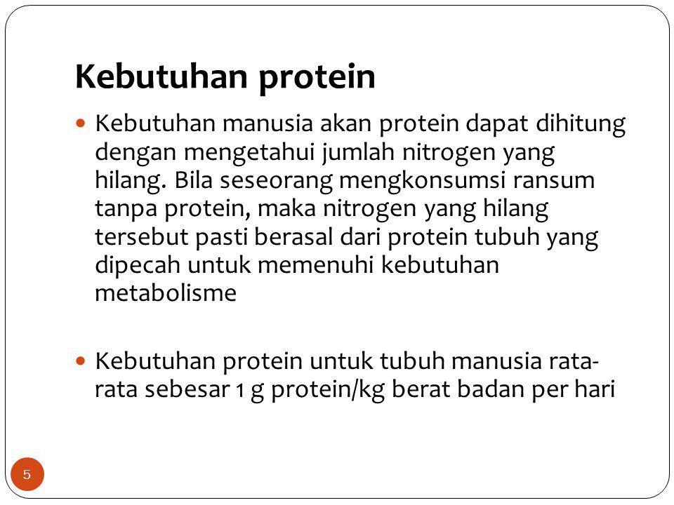 Kebutuhan protein