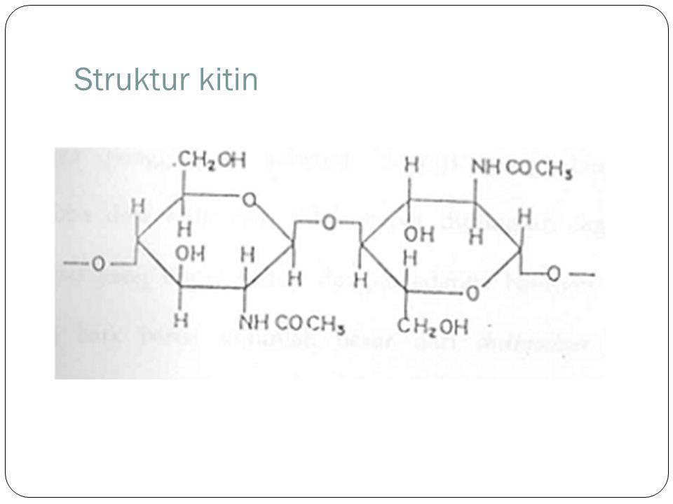Struktur kitin