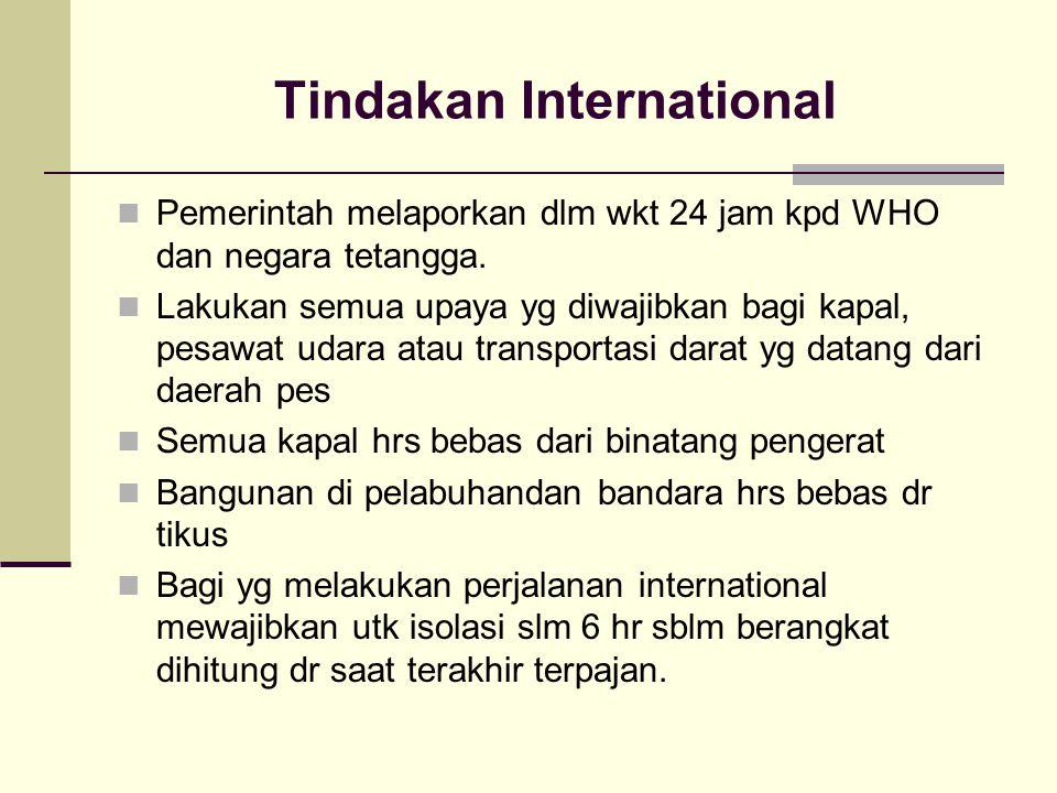 Tindakan International