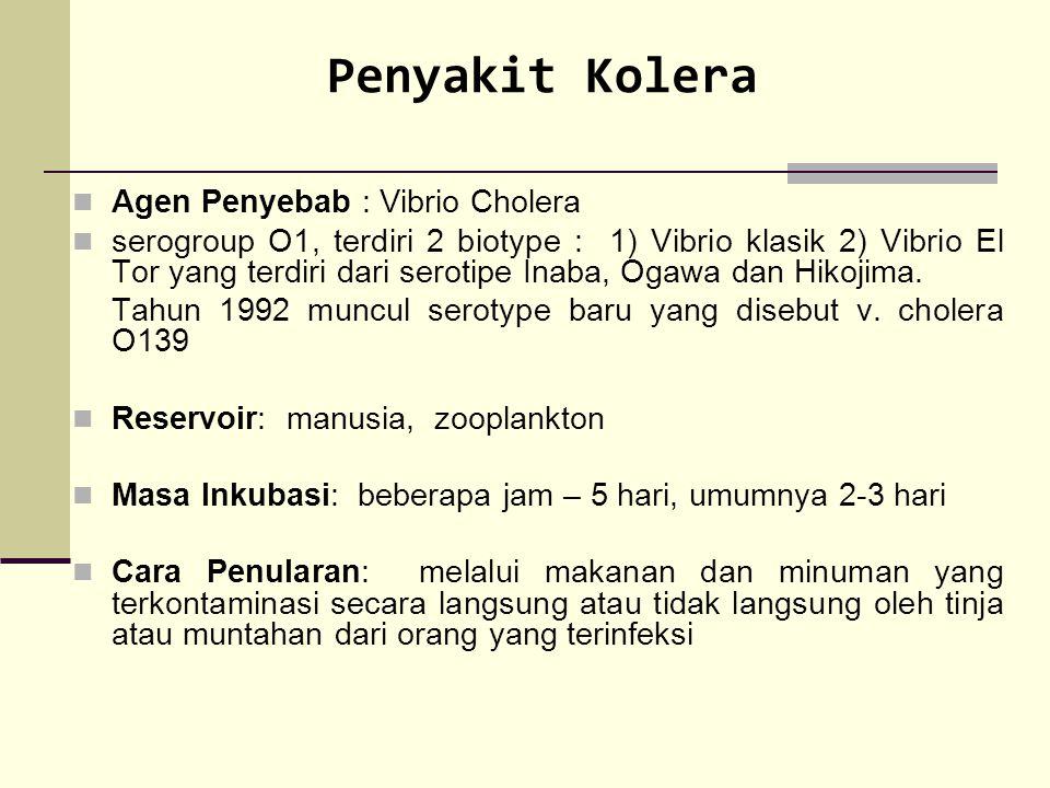 Penyakit Kolera Agen Penyebab : Vibrio Cholera