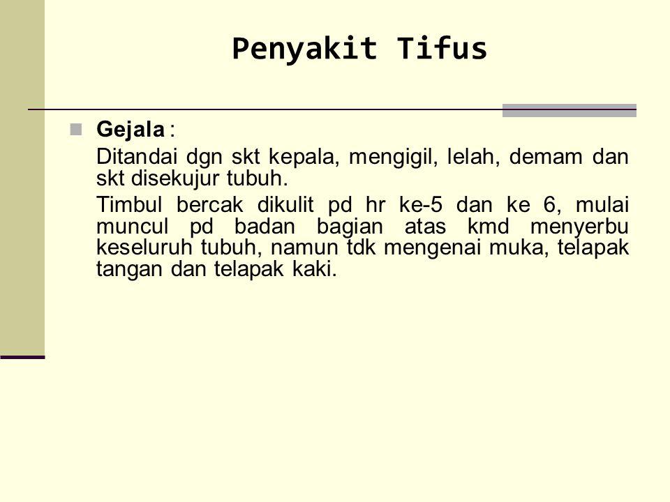 Penyakit Tifus Gejala :