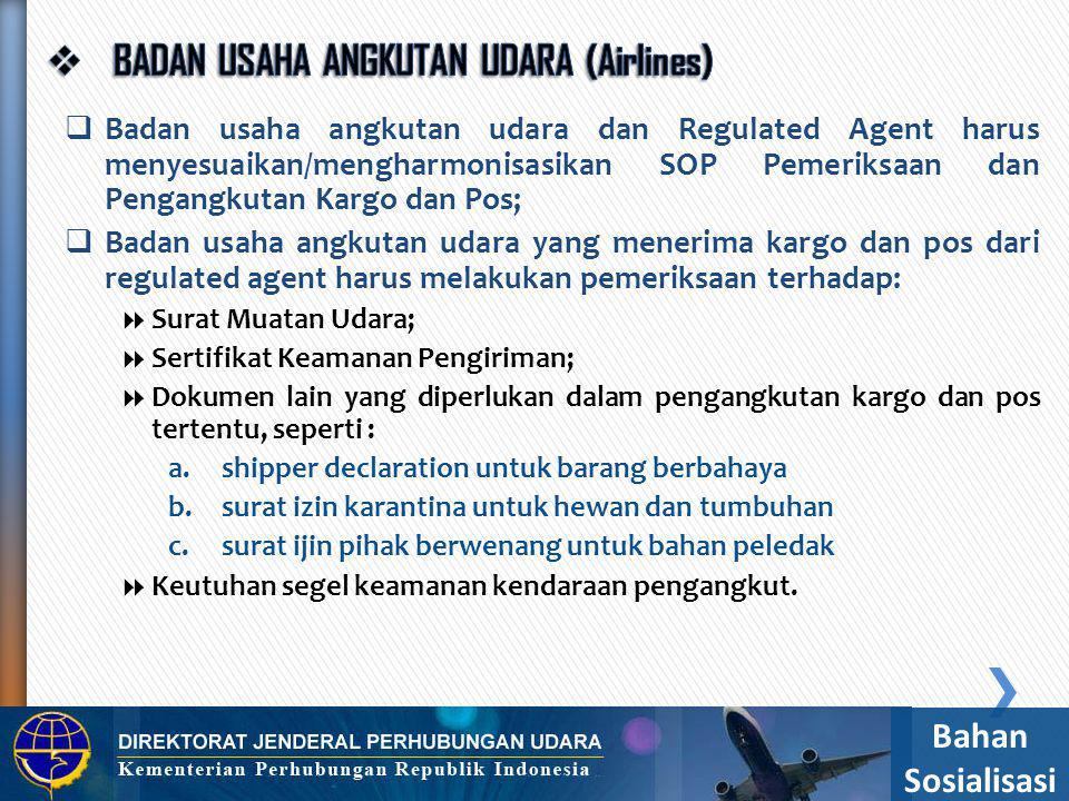 BADAN USAHA ANGKUTAN UDARA (Airlines)
