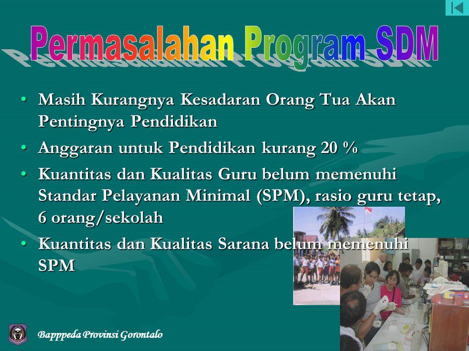 Permasalahan Program SDM