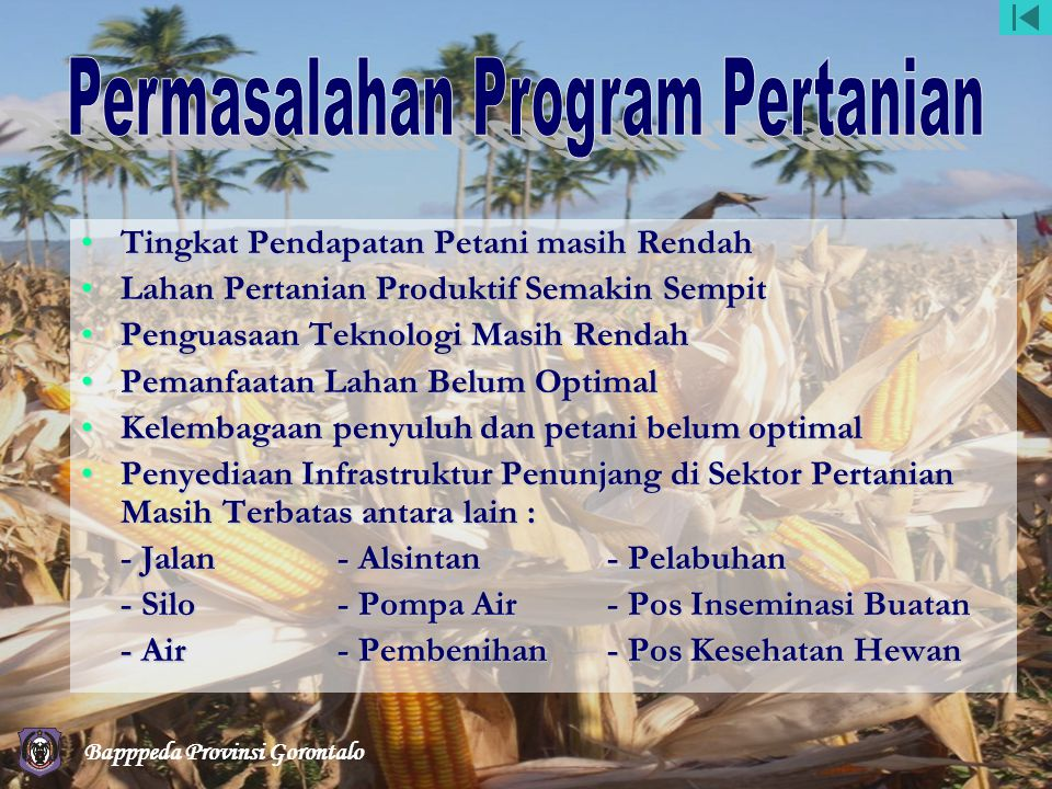 Permasalahan Program Pertanian