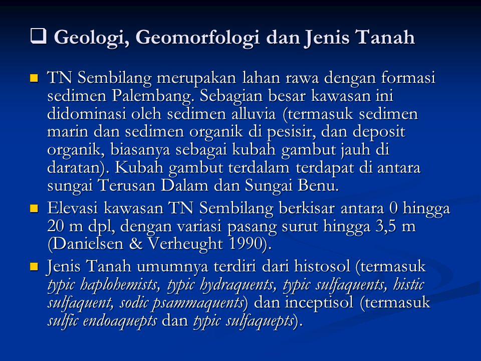 Geologi, Geomorfologi dan Jenis Tanah