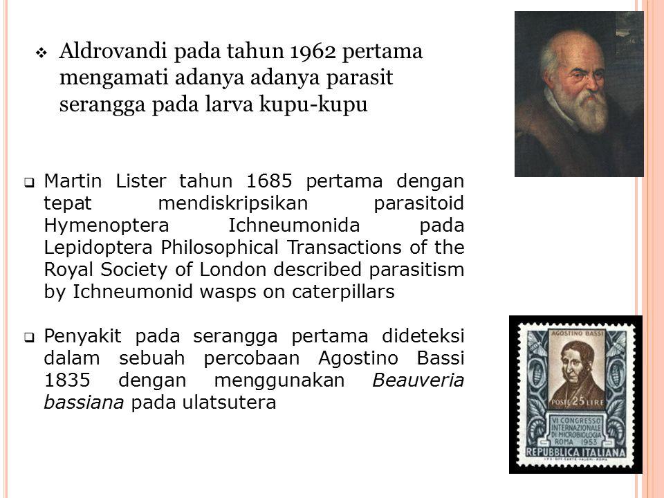 Aldrovandi pada tahun 1962 pertama mengamati adanya adanya parasit serangga pada larva kupu-kupu
