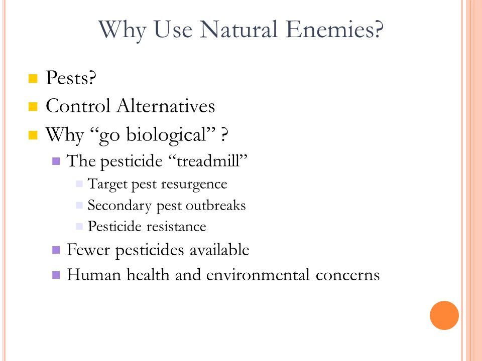Why Use Natural Enemies