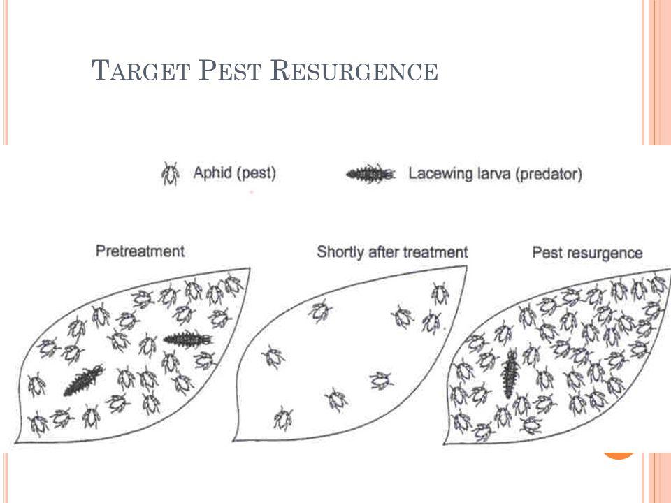 Target Pest Resurgence