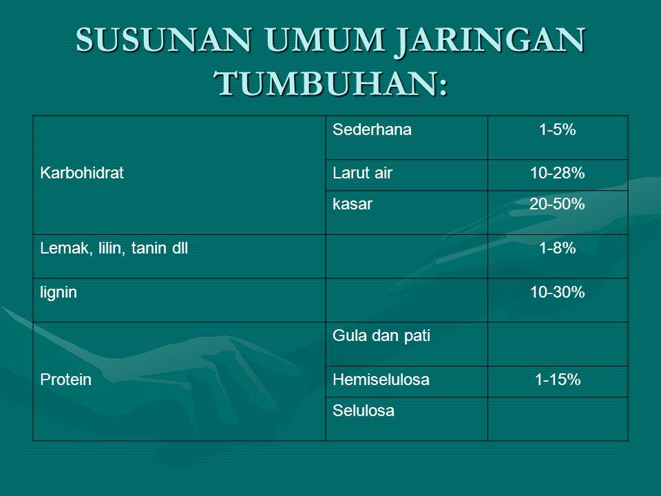 SUSUNAN UMUM JARINGAN TUMBUHAN: