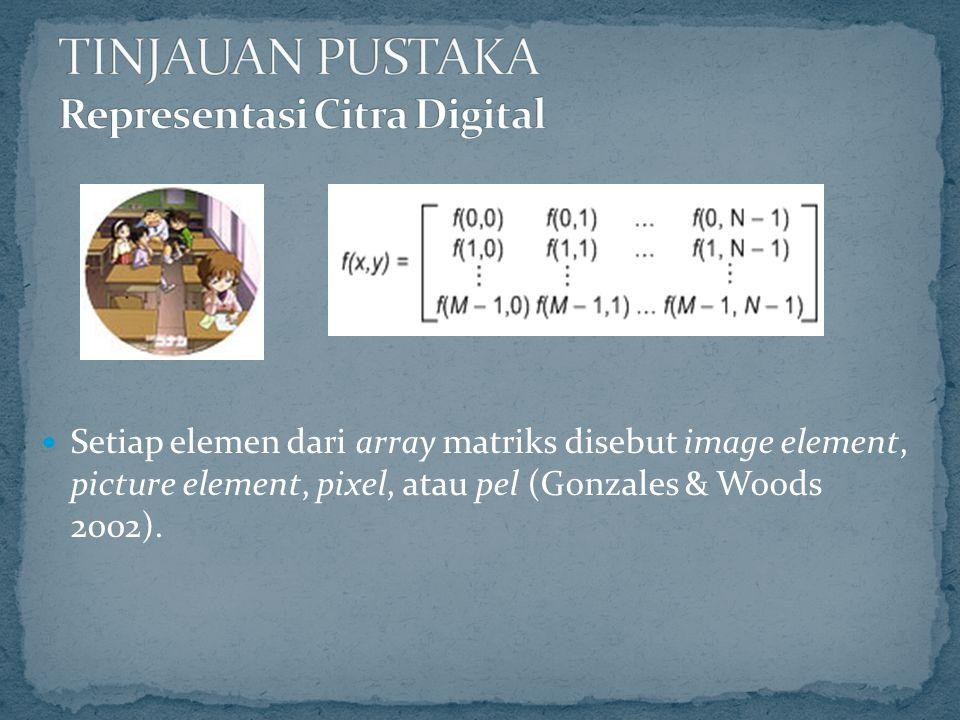 TINJAUAN PUSTAKA Representasi Citra Digital