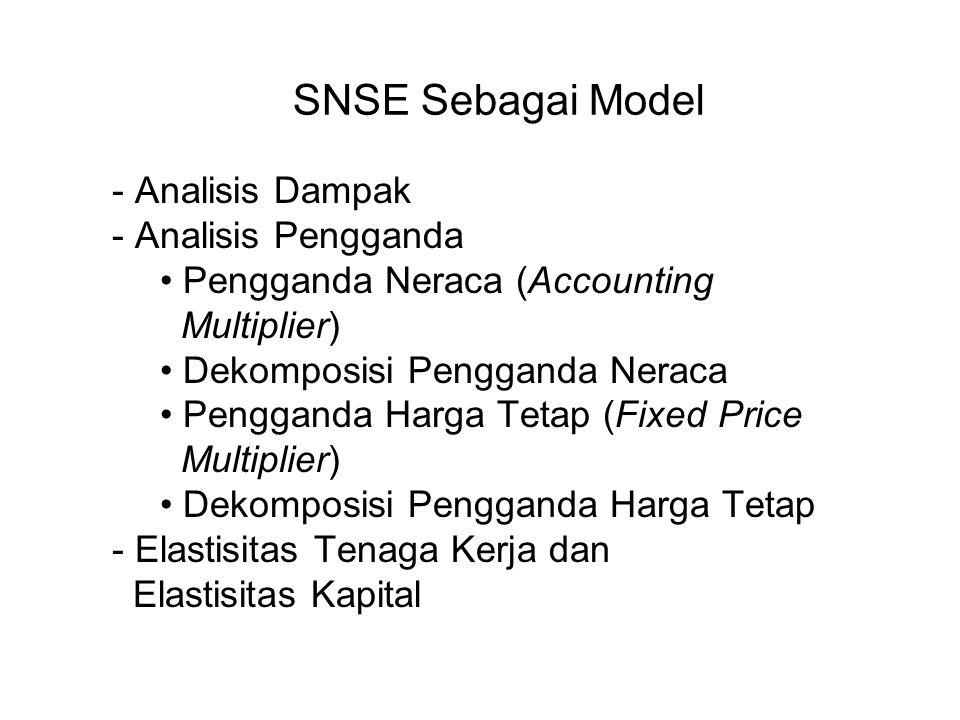 SNSE Sebagai Model Analisis Dampak Analisis Pengganda