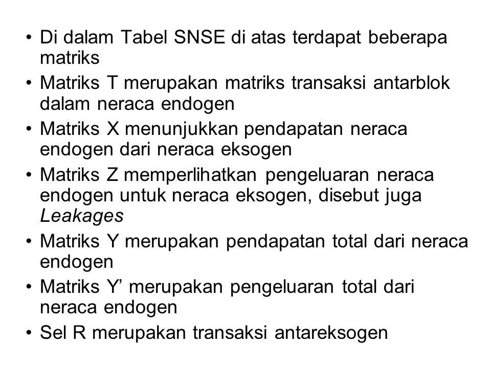 Di dalam Tabel SNSE di atas terdapat beberapa matriks