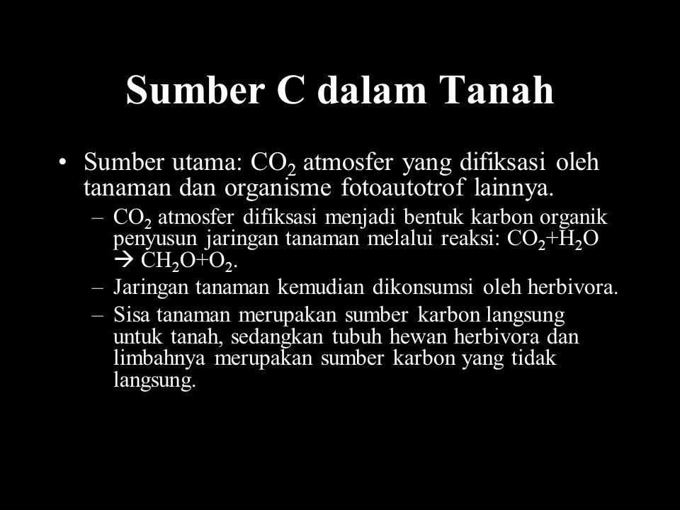 Sumber C dalam Tanah Sumber utama: CO2 atmosfer yang difiksasi oleh tanaman dan organisme fotoautotrof lainnya.