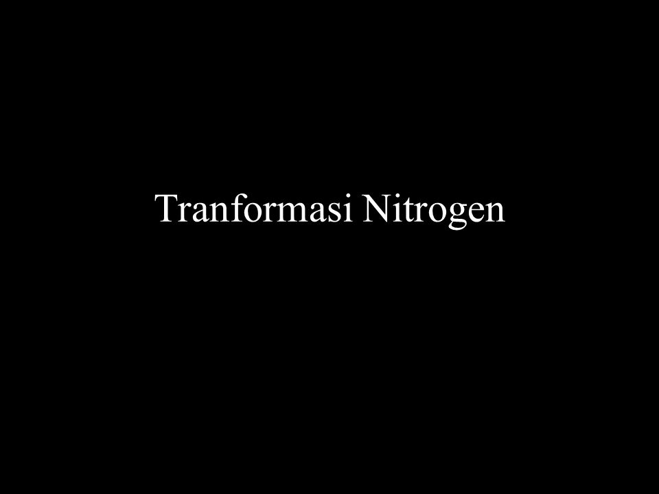 Tranformasi Nitrogen