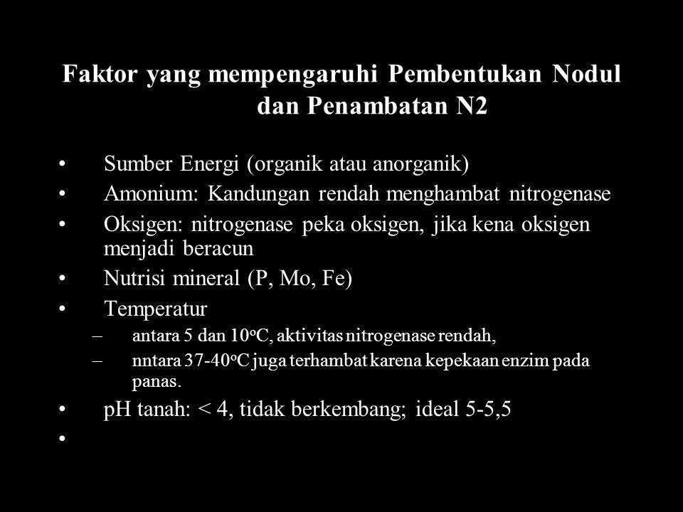 Faktor yang mempengaruhi Pembentukan Nodul dan Penambatan N2