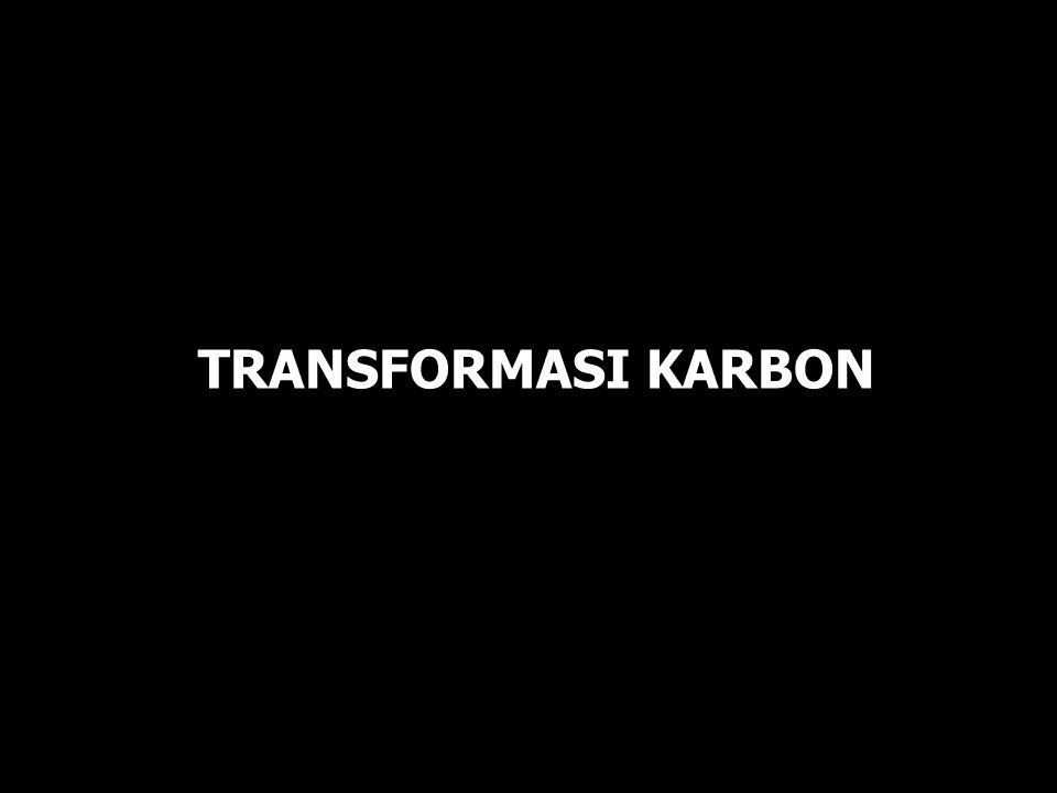 TRANSFORMASI KARBON Bagian 1