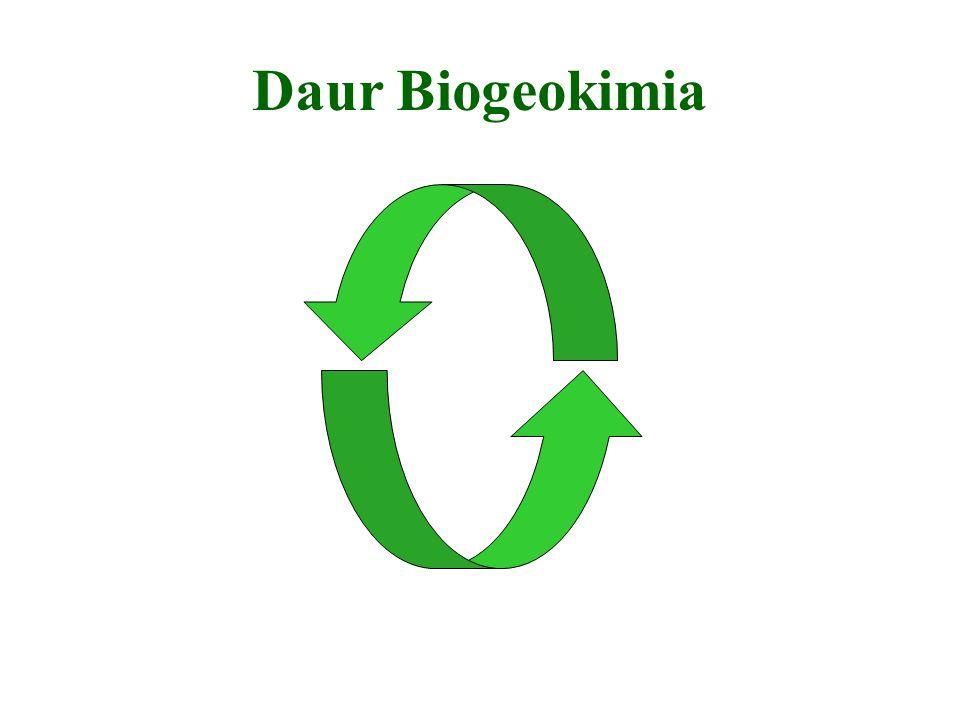 Daur Biogeokimia
