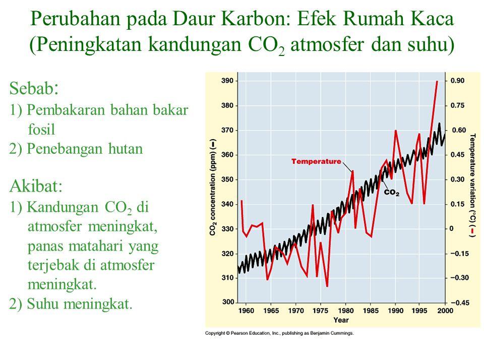 Perubahan pada Daur Karbon: Efek Rumah Kaca (Peningkatan kandungan CO2 atmosfer dan suhu)