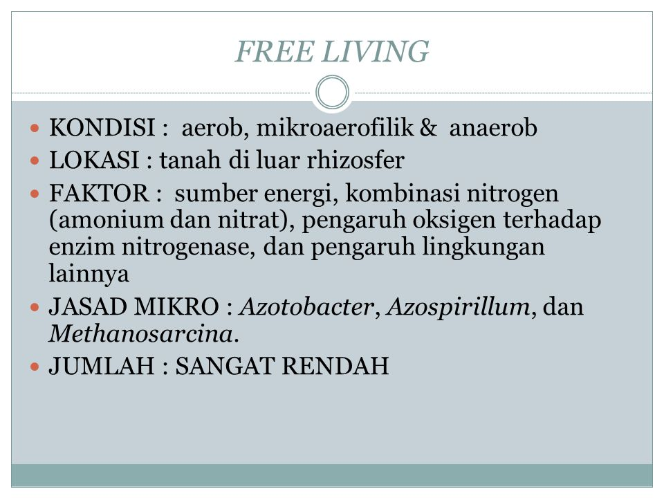 FREE LIVING KONDISI : aerob, mikroaerofilik & anaerob