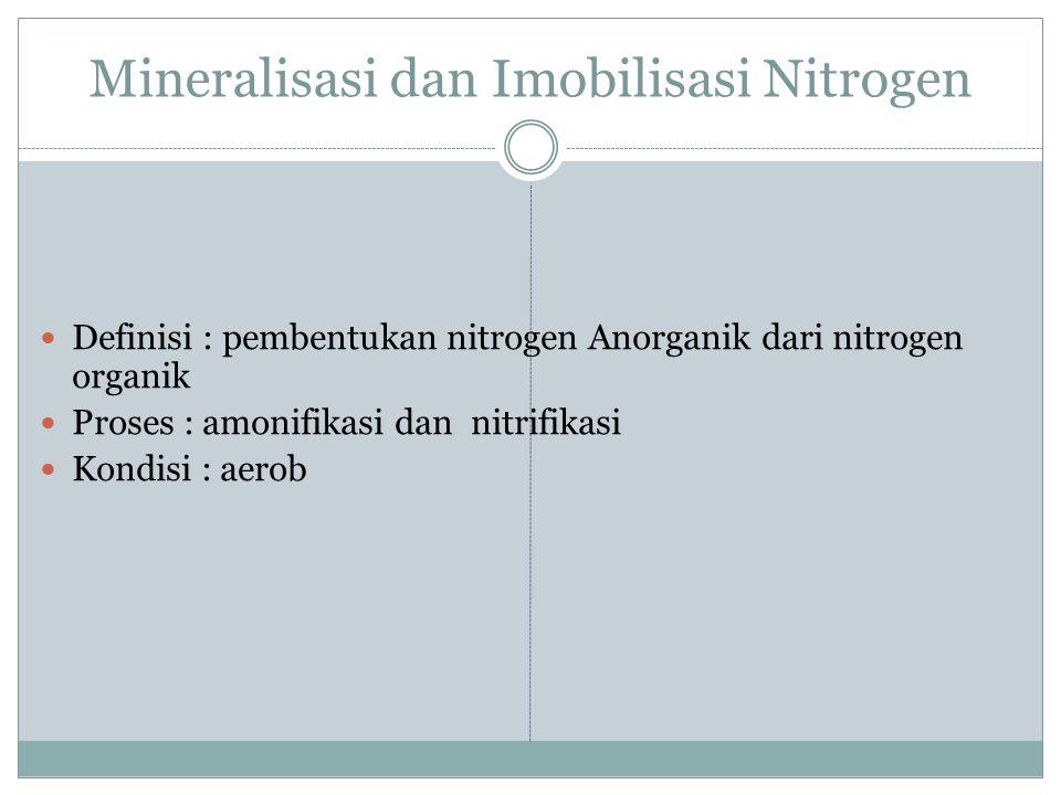 Mineralisasi dan Imobilisasi Nitrogen
