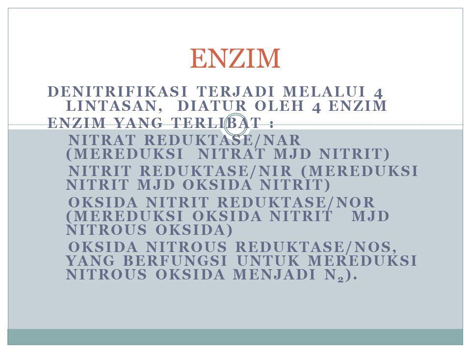 ENZIM Denitrifikasi terjadi melalui 4 lintasan, diatur oleh 4 enzim