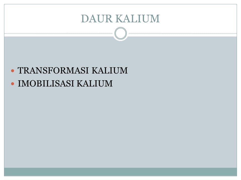 DAUR KALIUM TRANSFORMASI KALIUM IMOBILISASI KALIUM