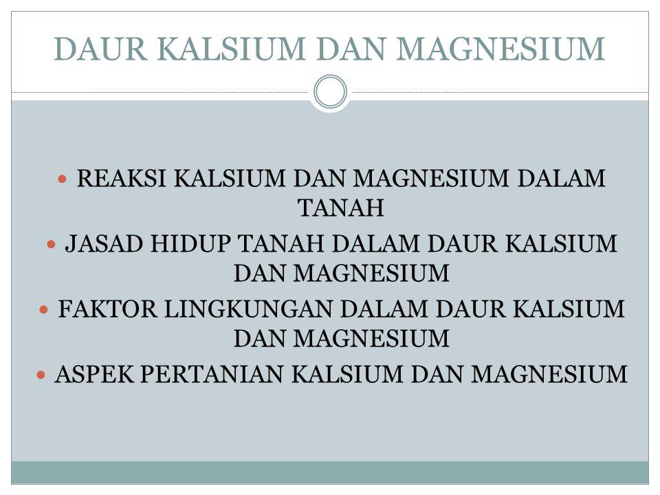 DAUR KALSIUM DAN MAGNESIUM