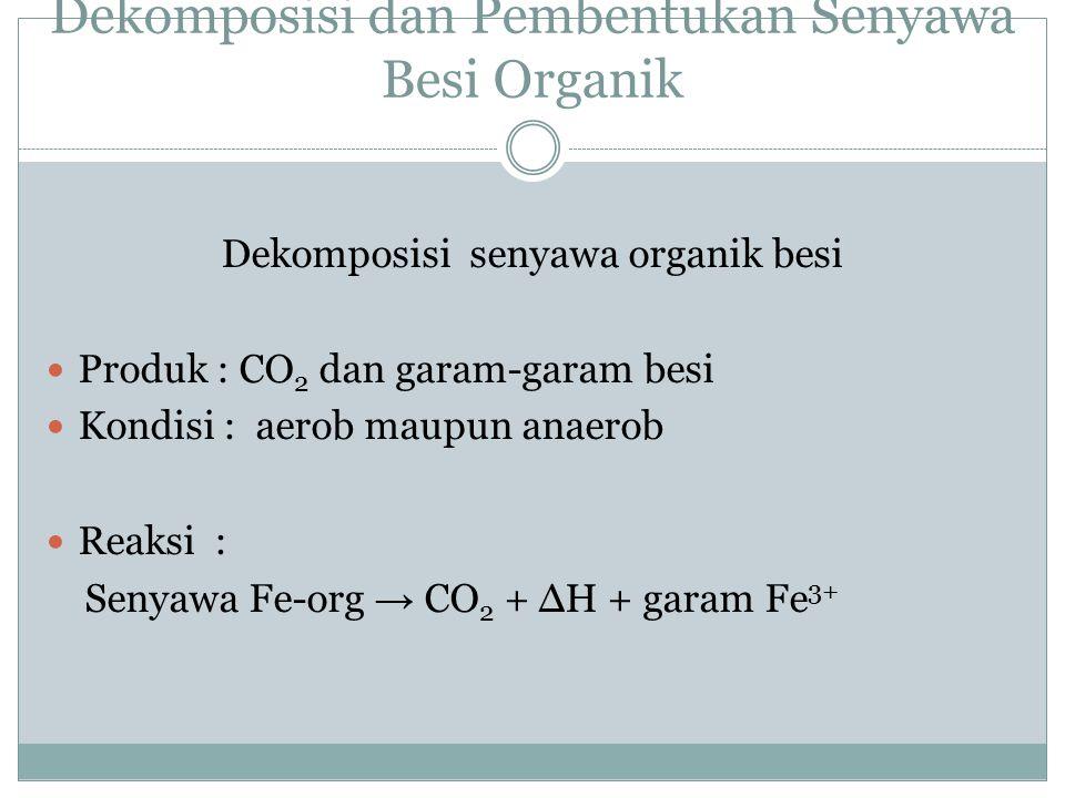 Dekomposisi dan Pembentukan Senyawa Besi Organik