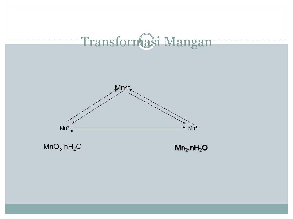 Transformasi Mangan Mn2+ Mn3+ Mn4+ MnO3.nH2O Mn2.nH2O