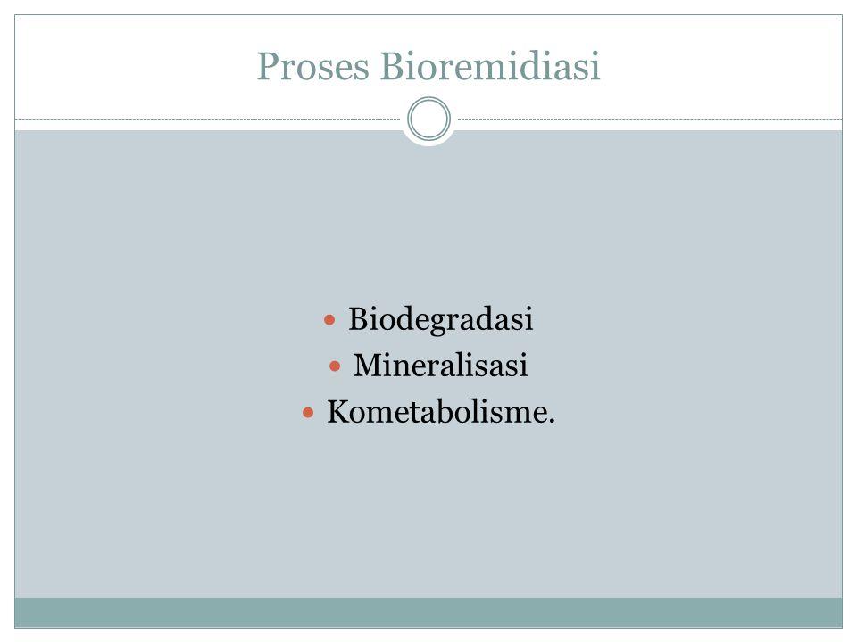 Proses Bioremidiasi Biodegradasi Mineralisasi Kometabolisme.