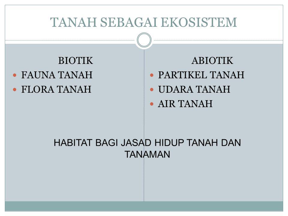 TANAH SEBAGAI EKOSISTEM