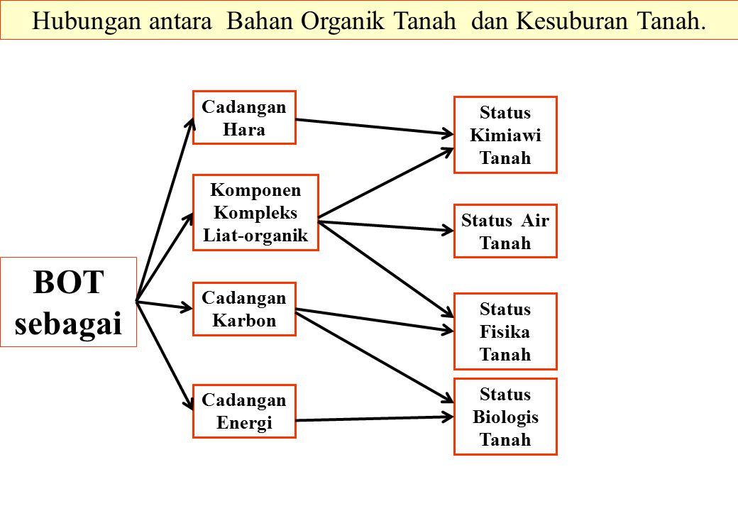 Komponen Kompleks Liat-organik