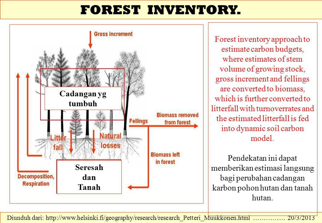 FOREST INVENTORY.