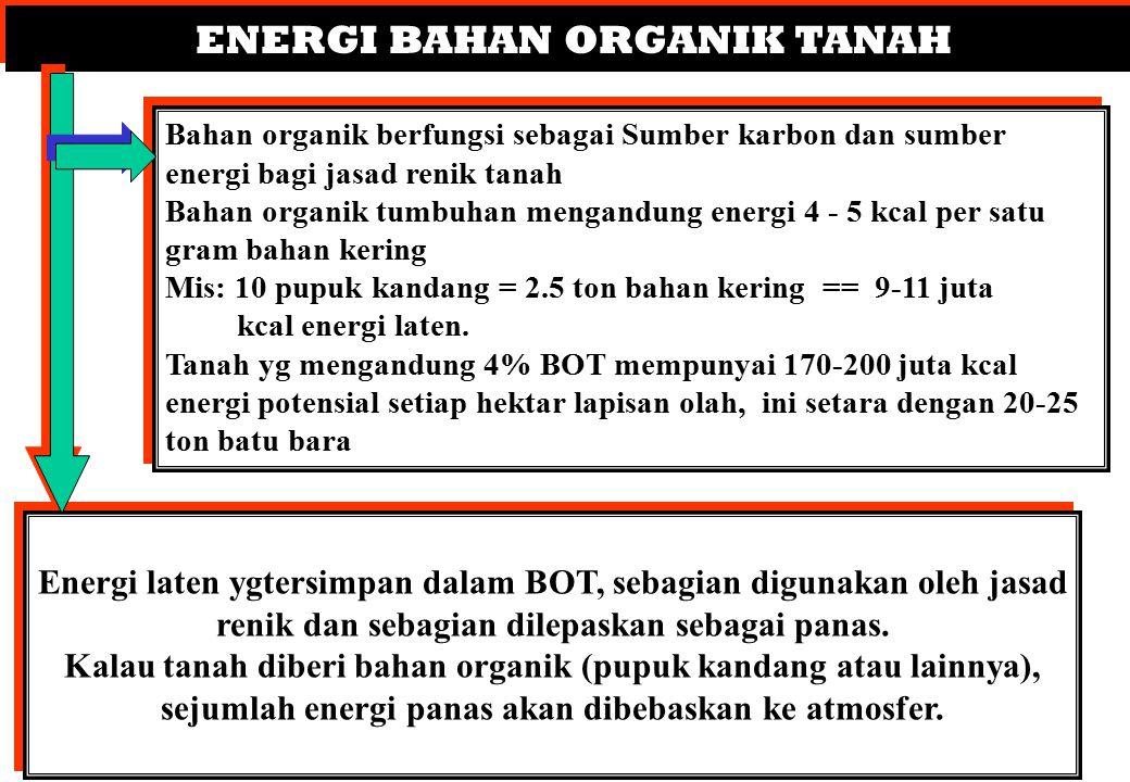 ENERGI BAHAN ORGANIK TANAH