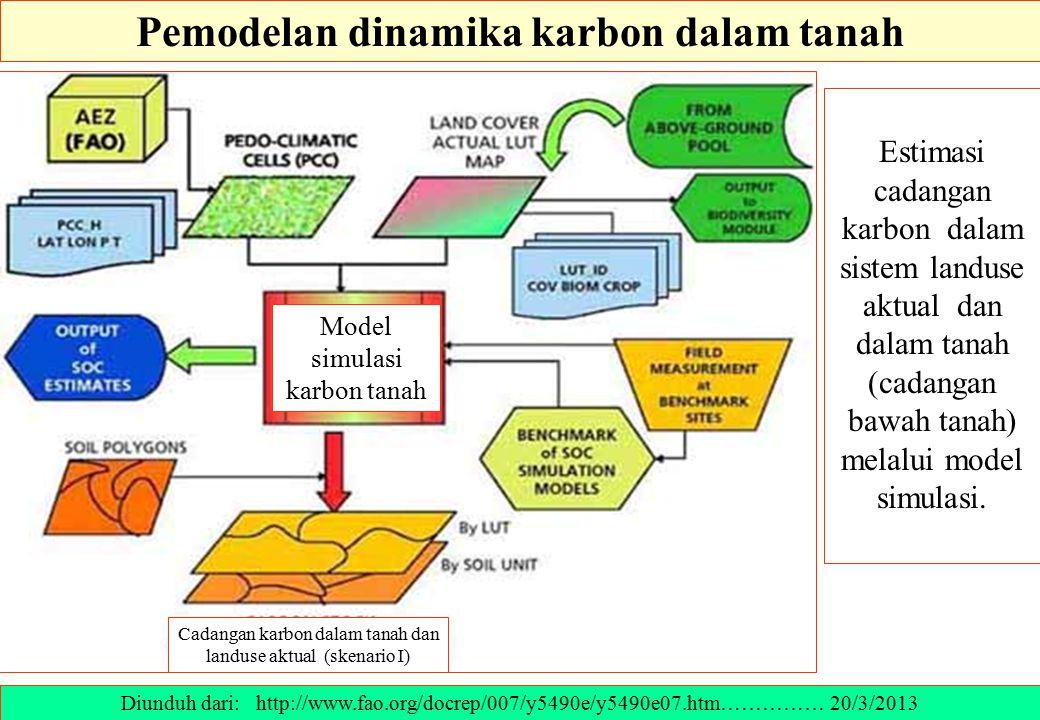 Pemodelan dinamika karbon dalam tanah