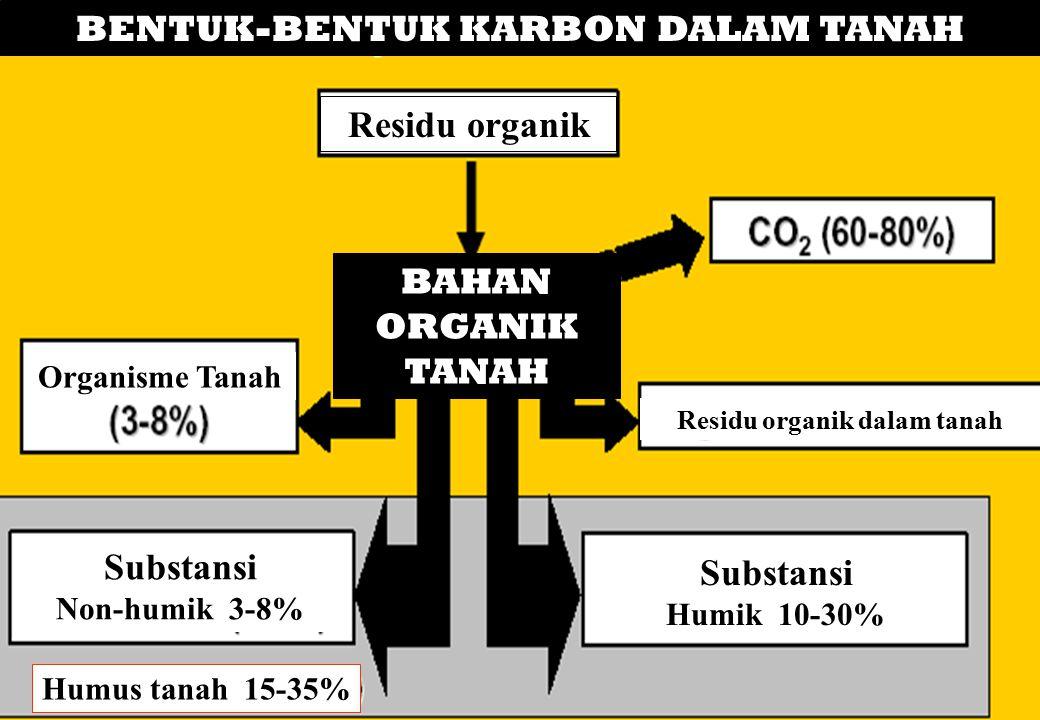 BENTUK-BENTUK KARBON DALAM TANAH Residu organik dalam tanah