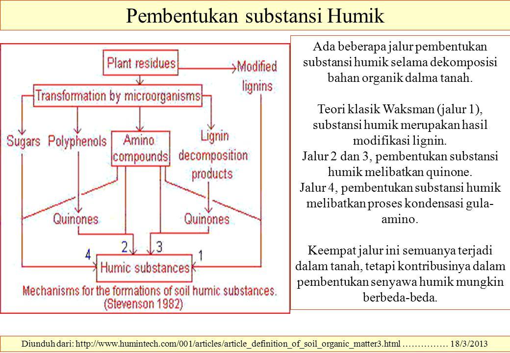 Pembentukan substansi Humik