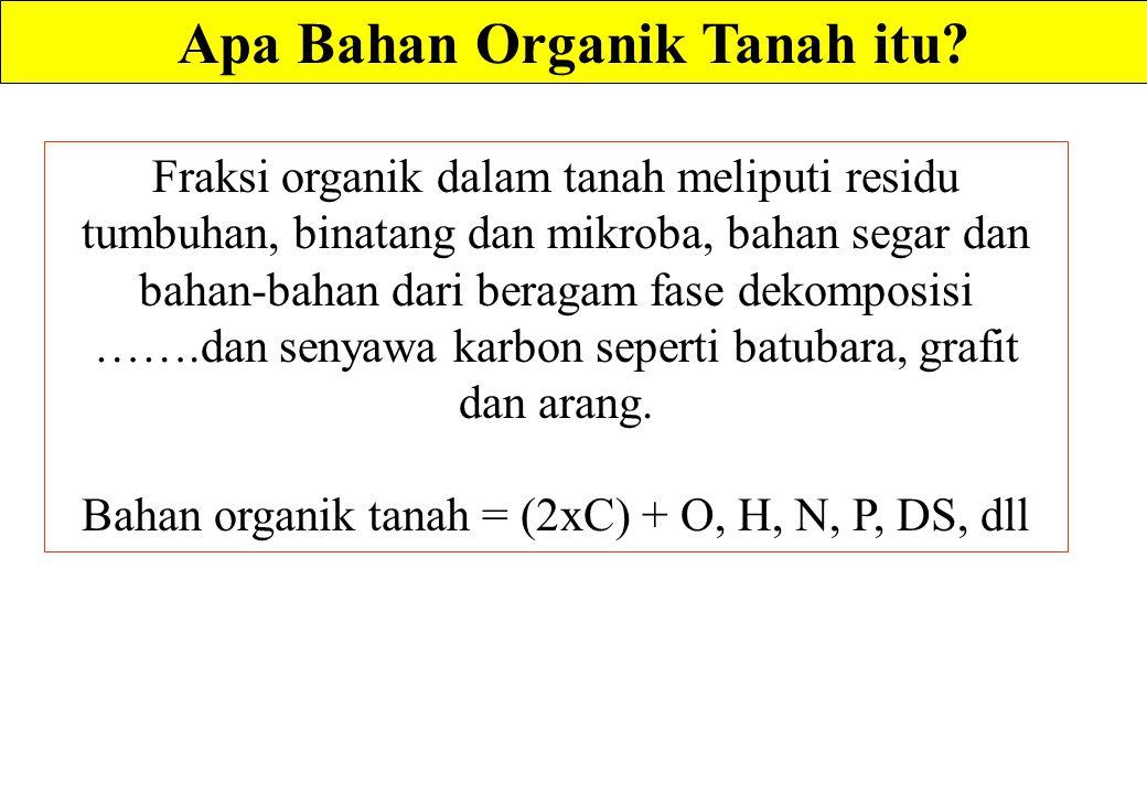Apa Bahan Organik Tanah itu