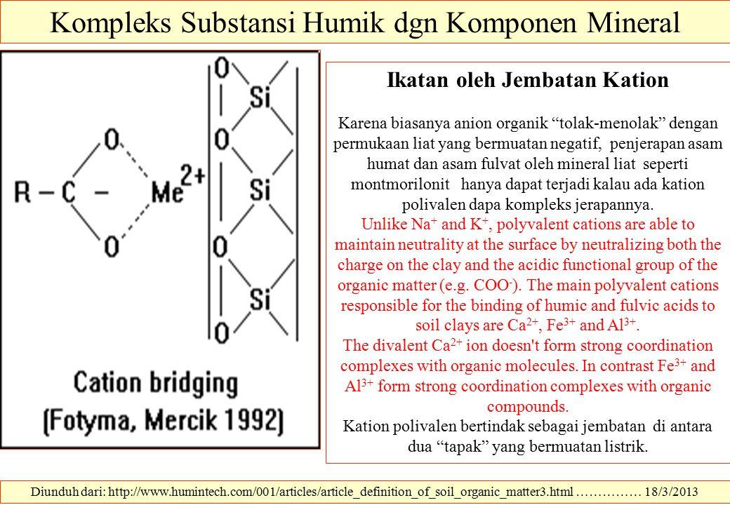 Kompleks Substansi Humik dgn Komponen Mineral