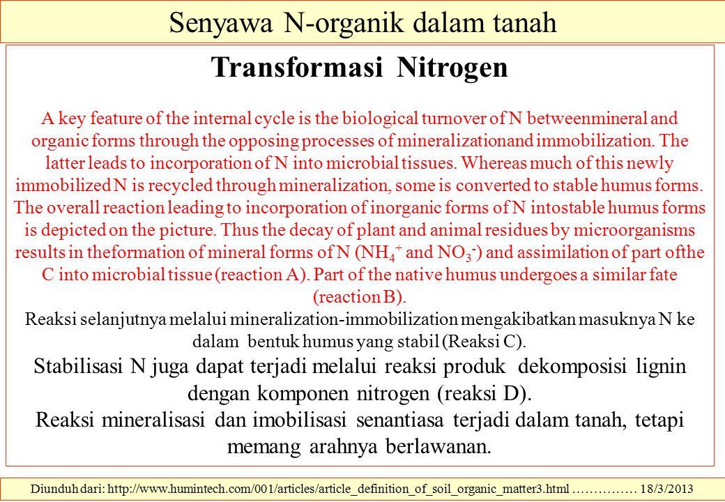 Senyawa N-organik dalam tanah